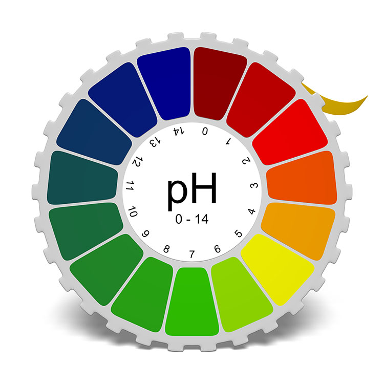 pH Level Chart